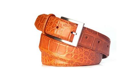 belt13